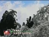 [视频]春天的中国