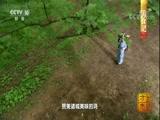 《中国影像方志》 第59集 山东诸城篇 00:39:46