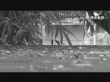 【40】鹭岛丰碑之《饥饿的控诉》 00:05:41