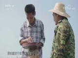 《餐桌上的节日》儋州粽子 00:04:59