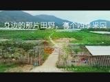 【看见厦门微视频征集】身边那片田野有个果园 00:02:53