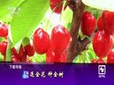 《共筑绿色家园》(4)美丽绿道跑起来 走遍中国 2018.06.21 - 中央电视台 00:24:45