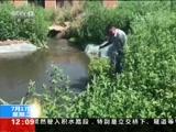 [新闻30分]齐齐哈尔 城市黑臭水体整治环保专项行动 20年无人问 巨大臭水湖污染严重