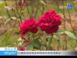 特区房地产 2018.08.30 - 厦门电视台 00:09:09