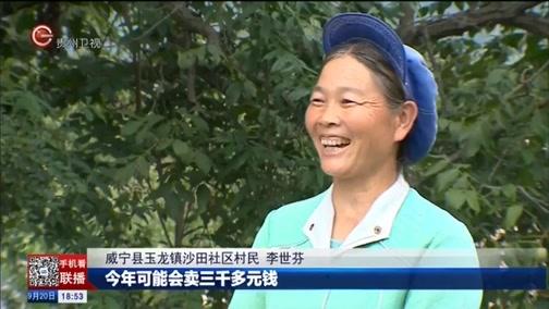 [贵州新闻联播]威宁:引进龙头企业 小核桃变成大产业