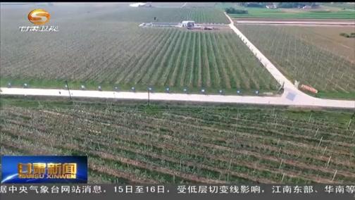 [甘肃新闻]我省安排资金加大农膜回收力度