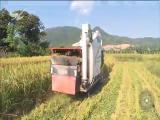 农作物生产机械化效益如何? 十分关注 2018.10.22 - 厦门电视台 00:09:23