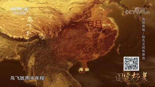 南溟奇甸——仙凡之间有奇岛 国宝档案 2018.11.12 - 中央电视台 00:13:38