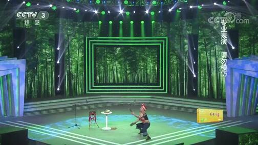 [综艺盛典]刘全和、刘全利亲自上阵 带来默剧《摄影爱好者》