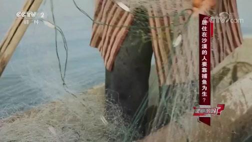 居住在沙漠的人要靠捕鱼为生 是真的吗? 是真的吗 2018.11.24 - 中央电视台 00:09:41