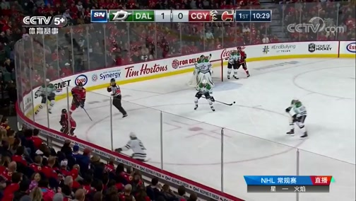 [NHL]常规赛:达拉斯星VS卡尔加里火焰 第一节