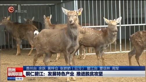 《贵州新闻联播》 20181203