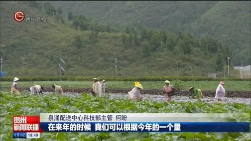 """[贵州新闻联播]兴义:""""校农结合""""以销促产 助农增收"""