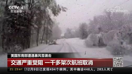 [中国新闻]美国东南部遭遇暴风雪袭击