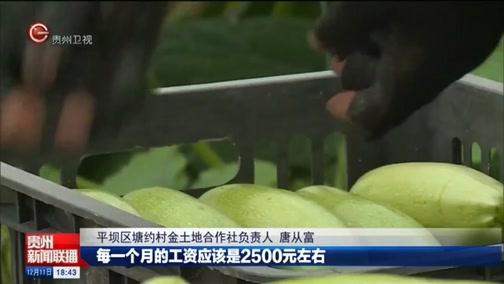 """[贵州新闻联播]平坝:不仅""""种得下""""更要""""卖得好"""""""