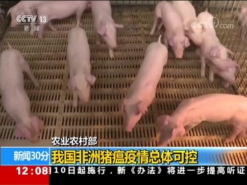 [新闻30分]农业农村部 我国非洲猪瘟疫情总体可控