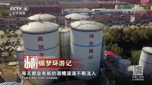 循梦环游记 走遍中国 2019.01.04 - 中央电视台 00:25:54
