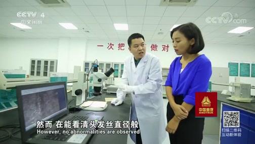 《中国特高压》(2)驯服高压 走遍中国 2019.1.8 - 中央电视台 00:25:50