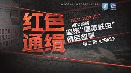 XM人物档案 [央视新闻]电视专题片《红色通缉》第二集《织网》 00:55:33