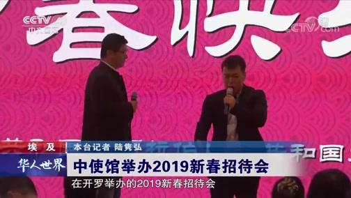 埃及 中使馆举办2019新春招待会 华人世界 2019.1.30 - 中央电视台 00:00:30
