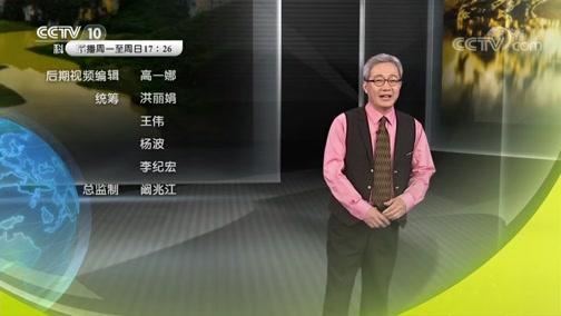 """《地理中国》 """"凤凰""""秘洞 00:24:06"""