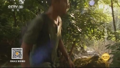 [真相]6米长90公斤重!真不愧是印度第一蛇