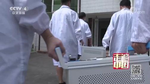 《幕后荣光》(2) 通信基石 走遍中国 2019.04.02 - 中央电视台 00:25:51
