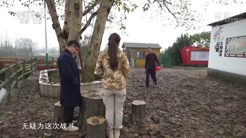 《军迷淘天下》 20190421 浏阳河畔的红色记忆