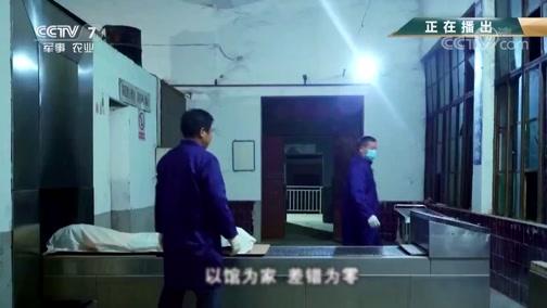 《军旅人生》 20190510 最美退役军人:郑璐/徐申权