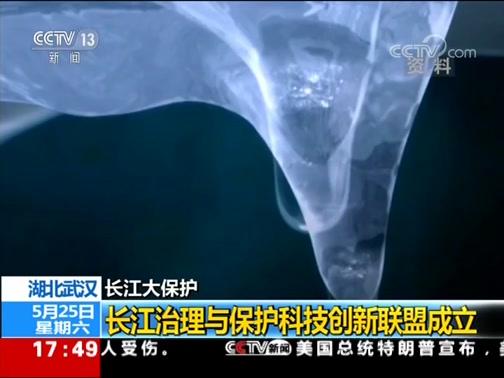 [新闻直播间]湖北武汉 长江大保护 长江治理与保护科技创新联盟成立