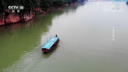 《探索发现》 20190629 千城百味(五)