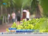 午间新闻广场 2019.07.04 - 厦门电视台 00:21:21