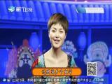 斩郑恩(5)斗阵来看戏 2019.07.06 - 厦门卫视 00:48:00