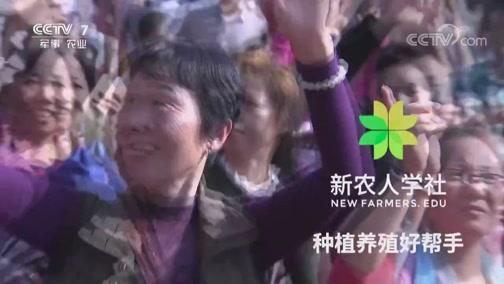 《乡约》 20190713 乡约江苏徐州市铜山区