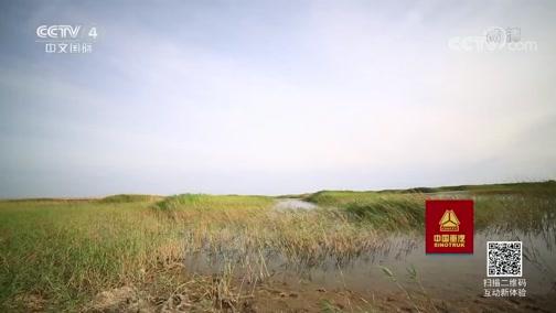 《走遍中国》 20190718 专题片《沙漠方舟》(上) 复活的居延海