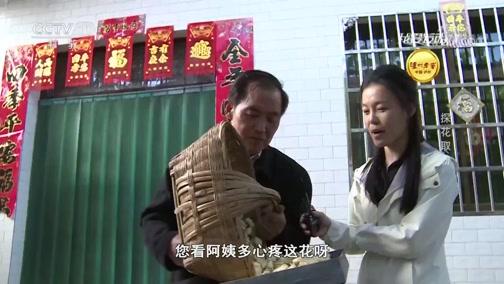 《我爱发明》 20190720 探花取粉