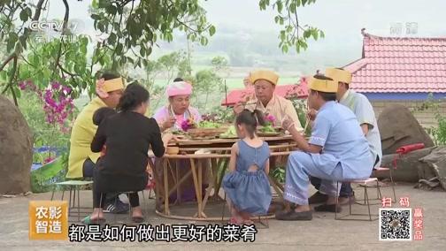 《乡土》 20190731 乡土中国 品味景谷