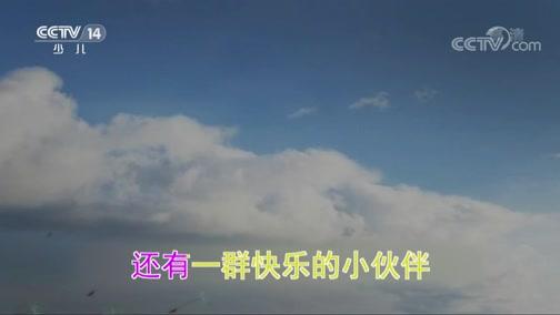 《大风车》 20190801