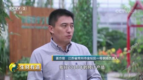 《生财有道》 20190813 江苏金坛:农园变乐园 振兴展新颜