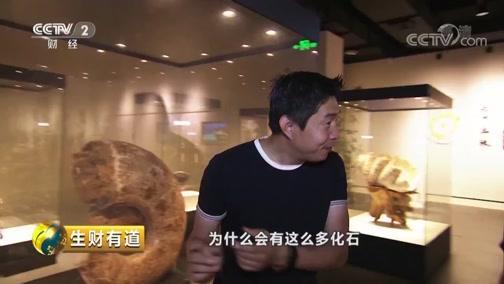 《生财有道》 20190814 夏日经济系列 浙江德清:研学带火暑期游