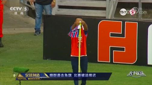 [天下足球]巴甲现蜂群袭击角旗 比赛被迫推迟