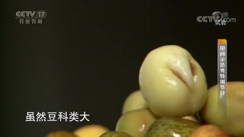 《田间示范秀》 20190822 纸上种的菜 七天就能吃