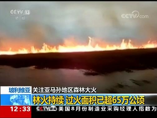 [新闻30分]玻利维亚 关注亚马孙地区森林大火 林火持续 过火面积已超65万公顷