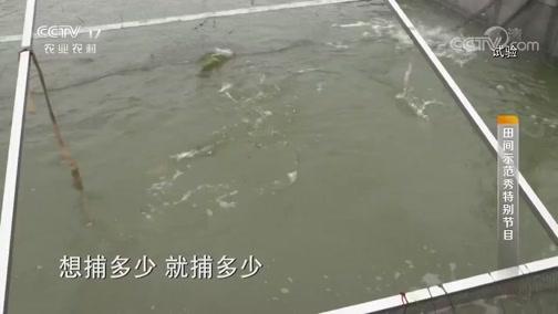 《田间示范秀》 20190828 让鱼跑起来
