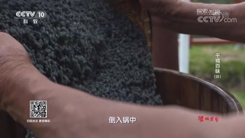 [探索发现]乌饭麻糍 有祛风败毒和防蚊防蝇的功效