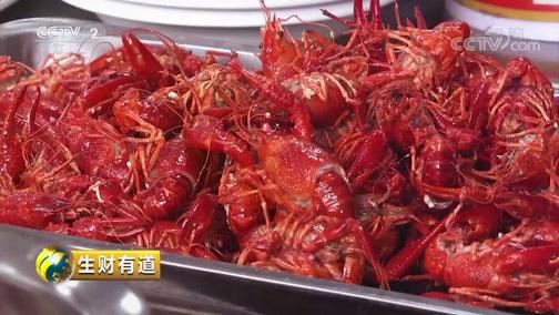 [生财有道]不多见的地方特色 美味干煸龙虾惹人爱