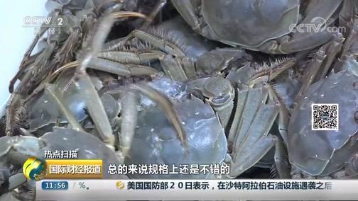 [国际财经报道]热点扫描 江苏高淳:固城湖大闸蟹开捕上市 个大价稳