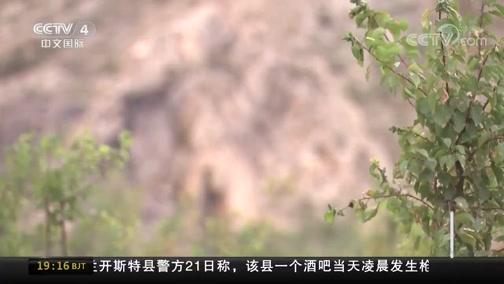 [中国新闻]壮丽七十年 奋斗新时代·宁夏石嘴山