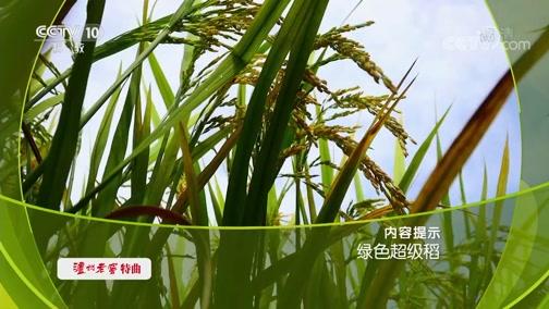 《走近科学》 20190923 绿色超级稻