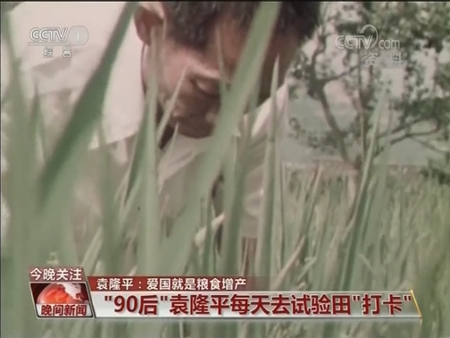 [视频]袁隆平:爱国就是粮食增产